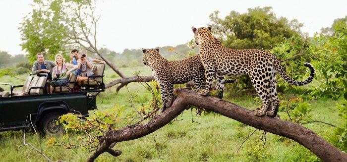 Namibia & Botswana