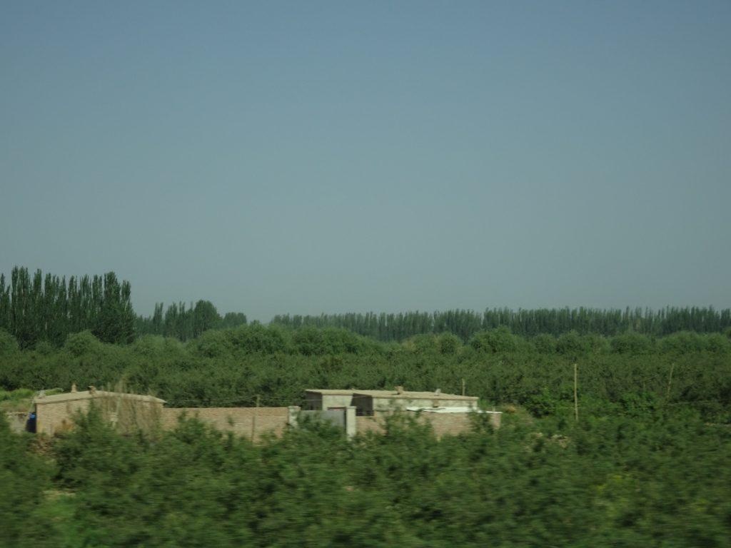 lehmhäuser inmitten der Felder (Annette Boeddinghaus)
