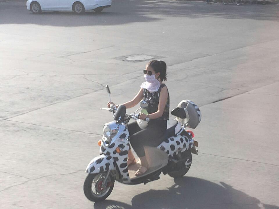 Stilsicher unterwegs auf dem Moped ( Anne-Dore Pietzcker)