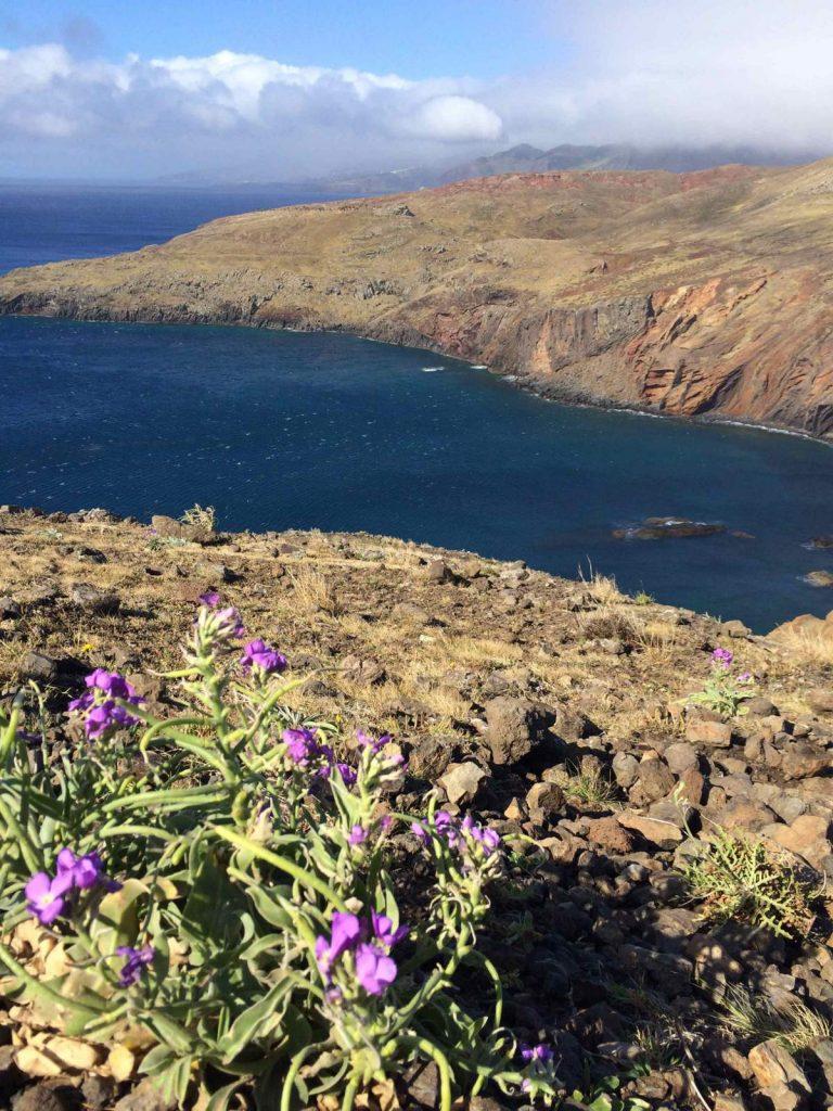 Reisebericht_Madeira