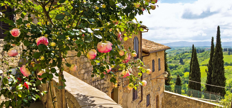 Balkon mit Rosen