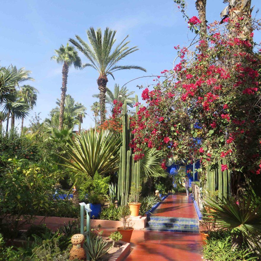 Marokko Garten