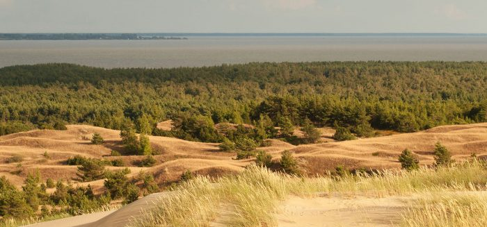 Sandy Dunes on the Curonian Spit in Nida, Neringa, Lithuania.