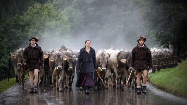 »Viehscheid im Allgäu«