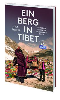 Titelbild Berg in Tibet
