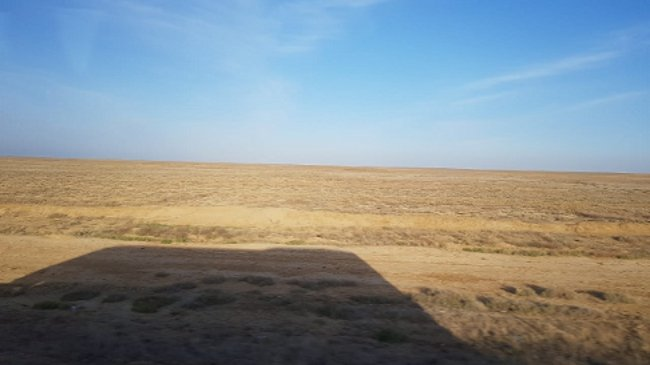 Der Schatten der Busses in der Steppe