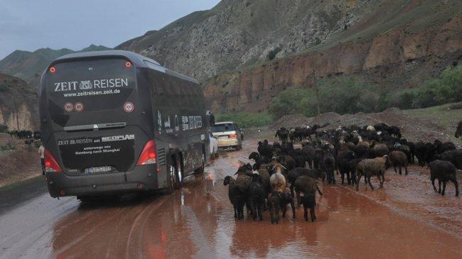 Schlamm und Schafe, Anfahrt zum Taldyk-Pass
