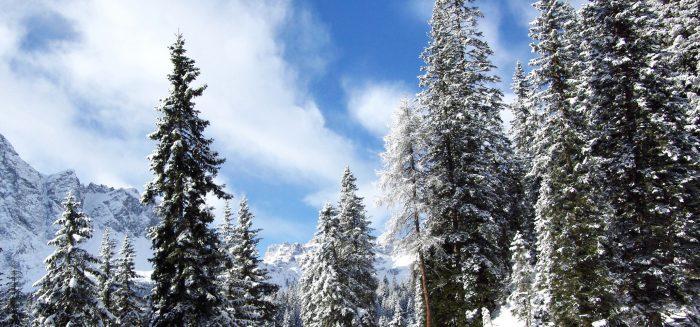 EU_766_Pustertal Winterwandern_01_S
