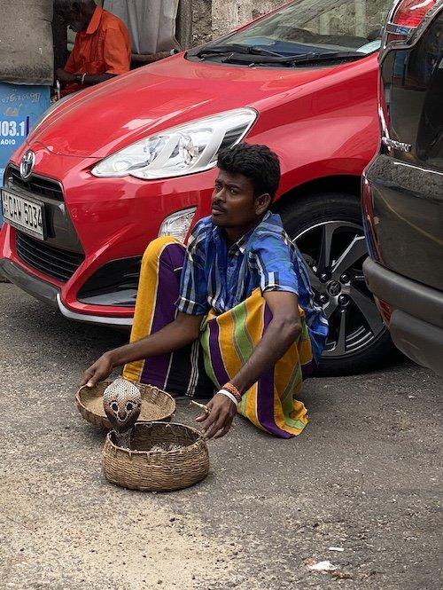 So haben wir uns das immer vorgestellt: Ein Schlangenbeschwörer und seine Kobra an einer Straße in der Nähe von Colombo.<br />Foto: Silvia Moelle