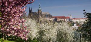 492_Prag im Frühling (c) Prague City Tourism